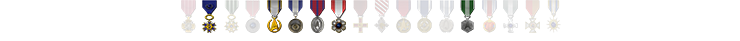 Avenger Medals