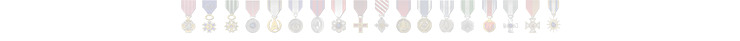 Beardedtoyman Medals