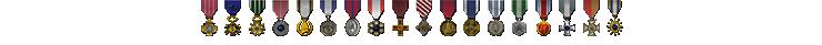 Mesh Medals